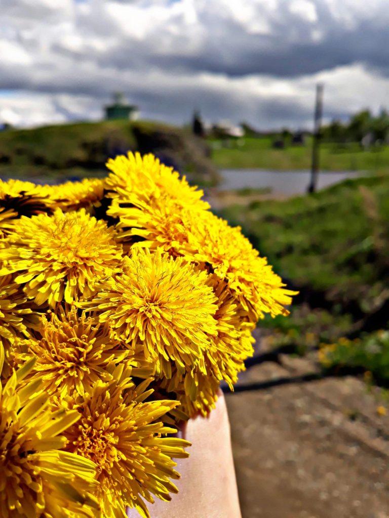 уральский цветочек